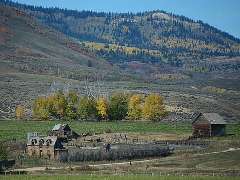 Oregon Trail by Charlotte Schafer