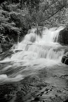 Oregon Waterfall by Tyra OBryant