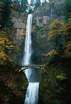 Oregon's Multnomah Falls by Dennis Reagan
