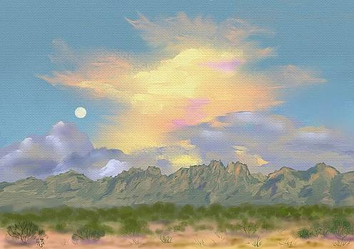 Organ Mountains Sunset  by Ellie Taylor
