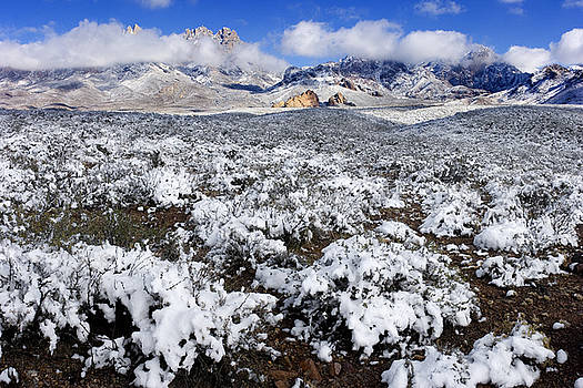 Organ Mountains with Snow by Patrick Alexander