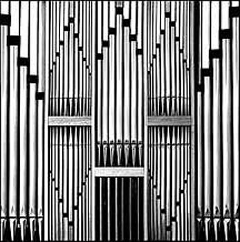 Organ Pipes by Rhea Malinofsky