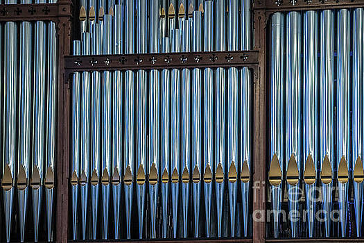 Organ Pipes by Thomas Marchessault