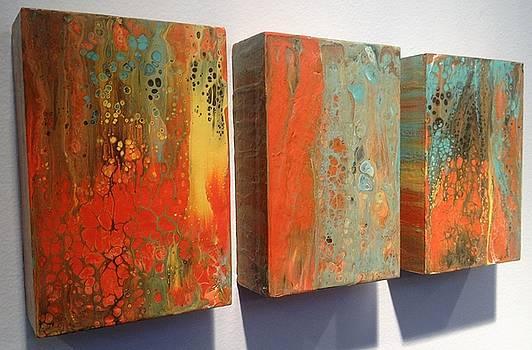 Organic Orange Trio by Ivy Stevens-Gupta