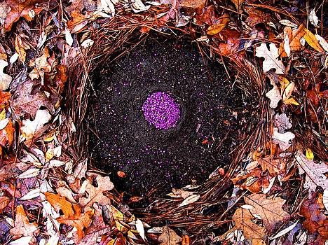 Organize Purple Berries by Lizzie  Johnson