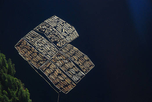 Organized Logging by Preston Zeller