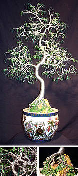 ORIENTAL BONSAI wire tree sculpture by Sal Villano