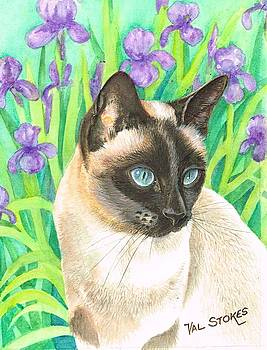 Oriental favourite by Val Stokes