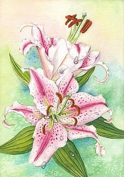 Oriental Lily by Lynne Henderson