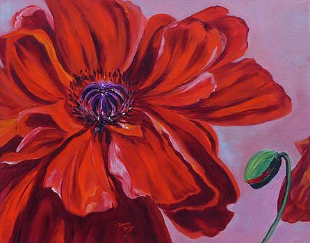 Oriental Poppy with Bud by Donna Drake