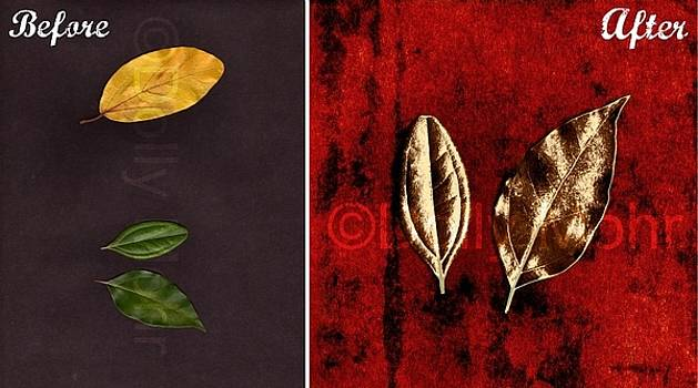 Origin of 'Bronze Leaves on Red' by Dolly Mohr