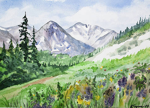 Original Watercolor - Colorado Mountains and Flowers by Cascade Colors
