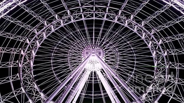 Orlando Eye  by Sheryl Unwin