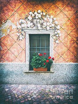 Ornate window with geraniums by Silvia Ganora