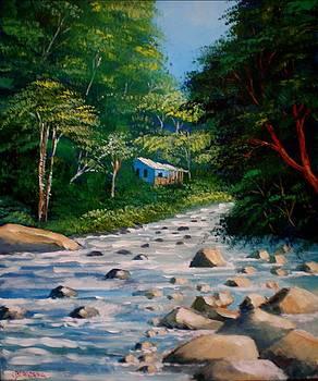 Orosi River in Costa Rica by Jean Pierre Bergoeing
