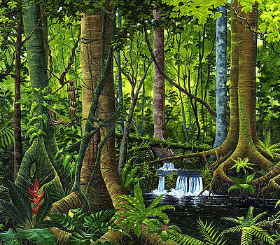 Osa Peninsula Rainforest by Michael Cranford