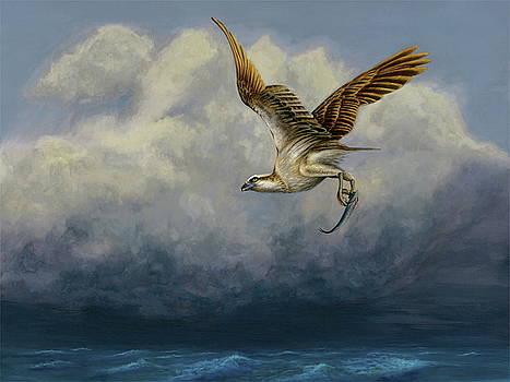 Osprey with fish by Daniel Atkins