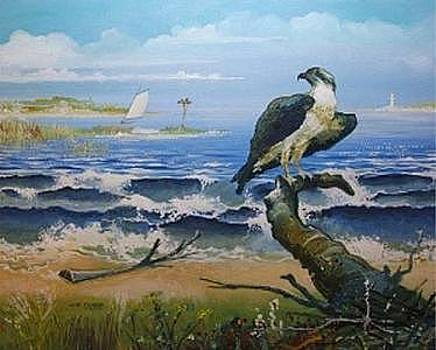 Osprey's World by John Tubb