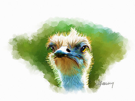 Ostrich Portrait by Michael Greenaway