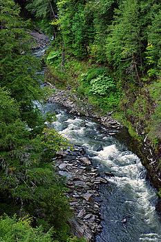 Ottauquechee River  by Bill Morgenstern