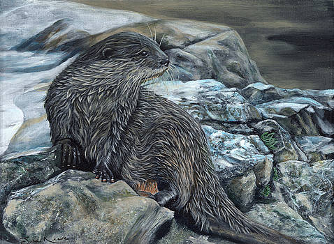 Otter on Rocks by John Neeve