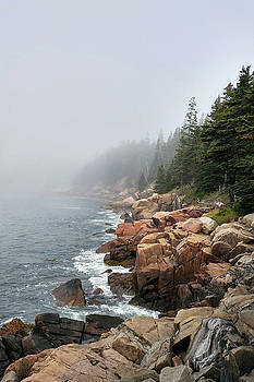 Otter Point by Bill Morgenstern