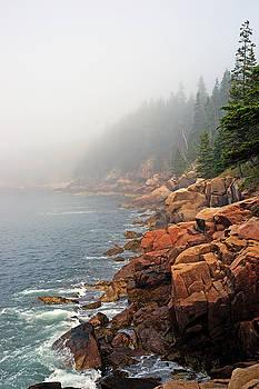 Otter Point Fog by Bill Morgenstern