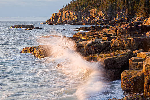 Otter Point Waves Acadia National Park Maine by Binh Ly