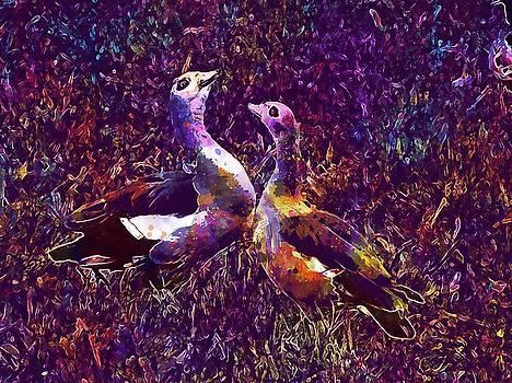 Ouette Of The Nile Couple Pen Bird  by PixBreak Art