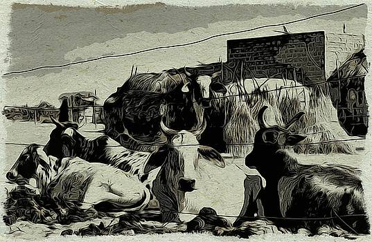 Bliss Of Art - Our Cows
