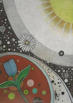 Our Little Universe and Beyond by Janet Hinshaw