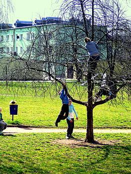 Henryk Gorecki - Our Tree-2014