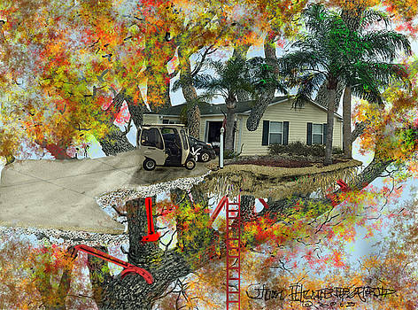 Jim Hubbard - Our tree house