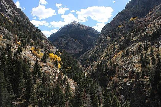 Ouray Canyon by Craig Butler