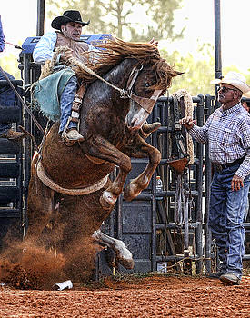 Out of the Chute by Keith Lovejoy