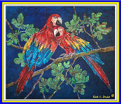 Sue Duda - Out on a Limb- Macaws Parrots - Bordered