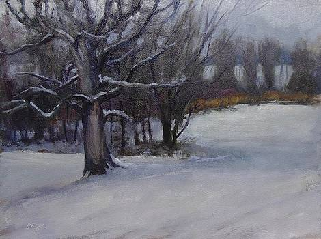 Out On A Limb by Todd Derr