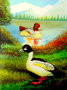 Out on DUCK by Rupali  Motihar