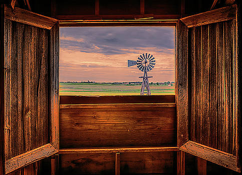 Susan Rissi Tregoning - Out The Barn Window