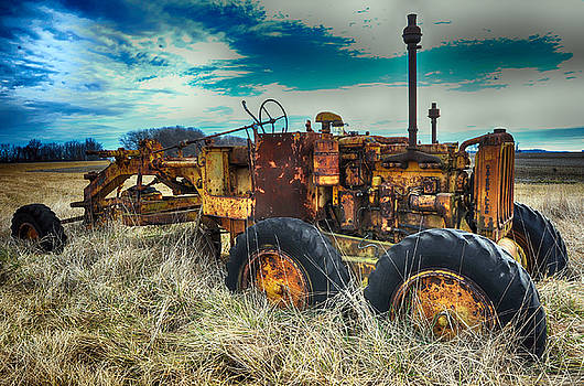 Out to Pasture by Steve Archbold