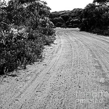 Tim Richards - Outback Road BW