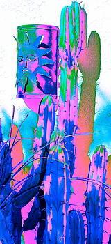 Outdoor Luminary 5 by M Diane Bonaparte