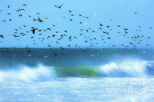 Dan Carmichael - Outer Banks Birds Over Crashing Waves AP