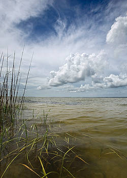 Outer Banks Coastline by Matt Tilghman
