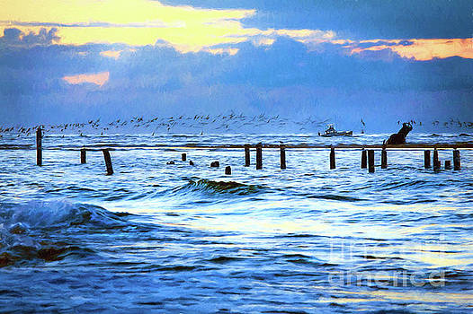 Dan Carmichael - Outer Banks Fishing Boats and Birds AP