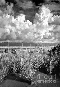 Dan Carmichael - Outer Banks Memories 9 AP