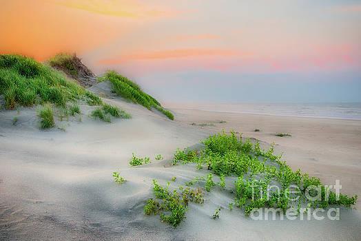 Dan Carmichael - Outer Banks Soft Dune Sunrise