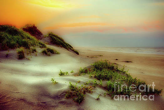 Dan Carmichael - Outer Banks Soft Dune Sunrise FX1