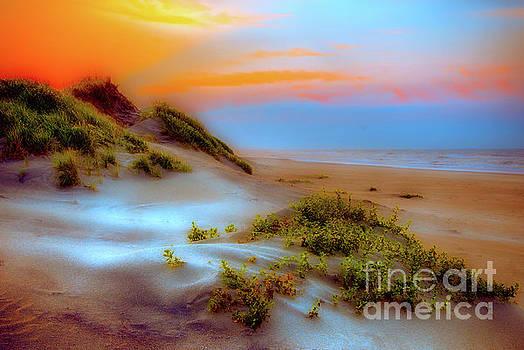 Dan Carmichael - Outer Banks Soft Dune Sunrise FX2