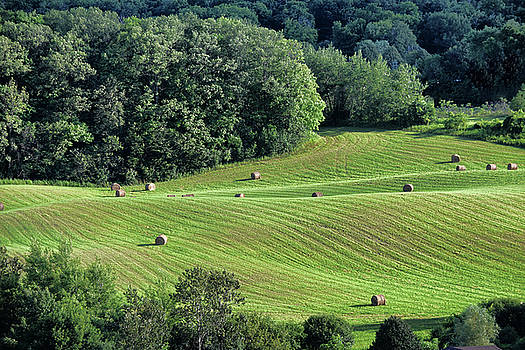 Over Hills and Bales by Maria Keady